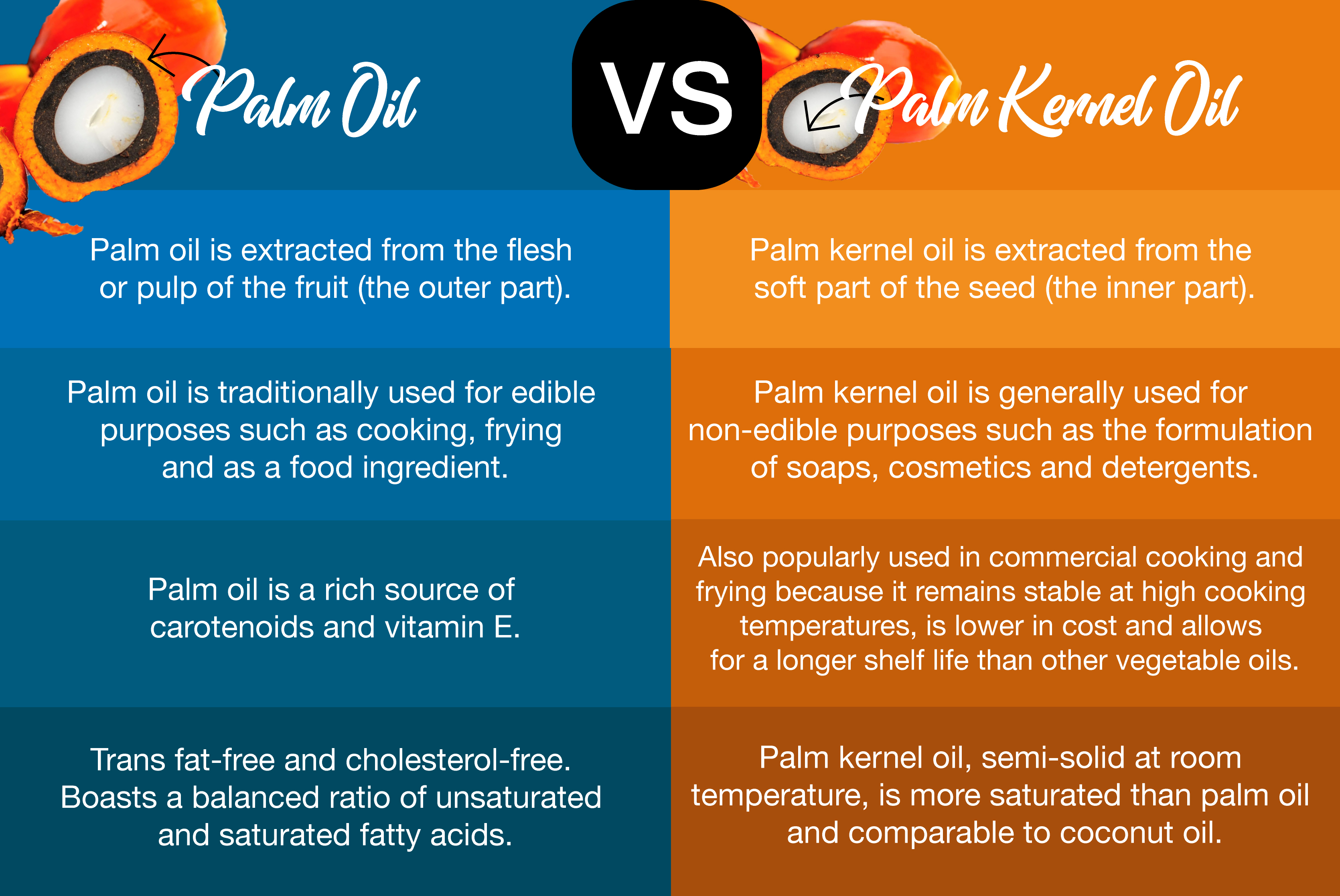 Malaysiakini Palm Oil Vs Palm Kernel Oil What S The Difference